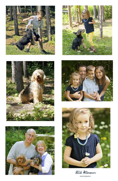 otterhounds - collage for WEBSITE